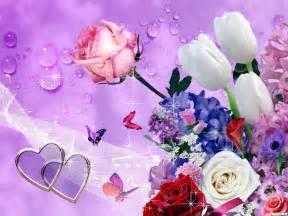 New Beautiful Flowers - flowers wallpaper hd wallpapers
