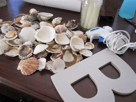 diy crafts with seashells 1000 images about seashell display ideas on