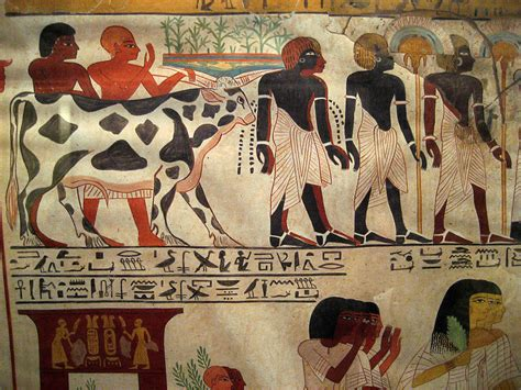Egyptian Wall Murals egyptian wall paintings from the new kingdom a photo on
