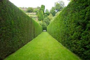 powys castle garden hedge by suburbanninj4 on deviantart