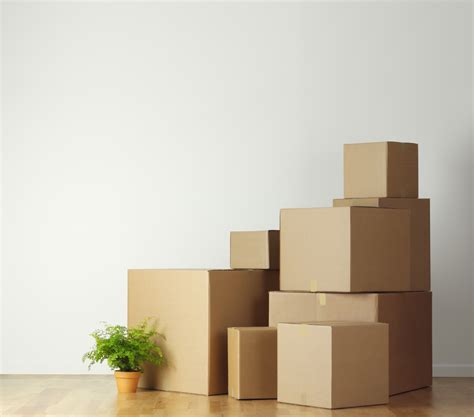 buy boxes for moving house dapoxetine tablets price absolute anonymity