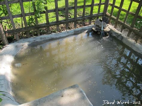 diy concrete pond  pool filter backyard diy pond