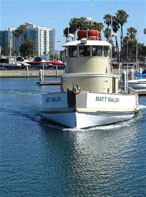 boat tours marina del rey marina del rey whale watching all you need to know