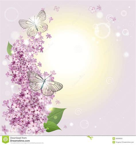 imagenes de mariposas lilas fondo floral con mariposas y una lila foto de archivo