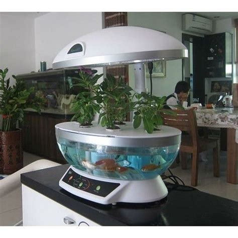 hydroponic indoor herb garden best 25 hydroponics kits ideas on pinterest hydroponic