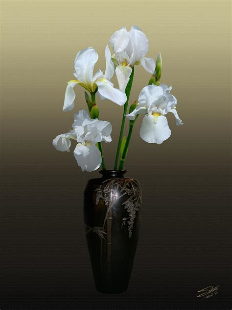 Iris Vase by White Iris In Vase Photograph By Schwartz