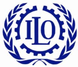 bureau international du travail r 233 seau environnement de