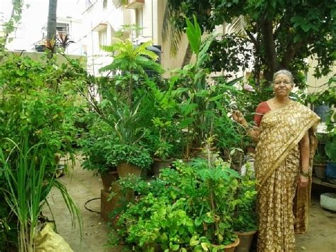 bengalurus oldest urban farmer leads