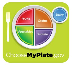 healthy plate diagram 301 moved permanently