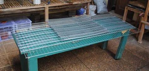 Jual Alas Kandang Kelinci dinomarket 174 pasardino kandang kelinci bahan kawat