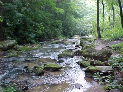 Creek Cabins Nc by Log Cabin Vacation Rentals Boone Blowing Rock Blue Ridge Parkway Nc
