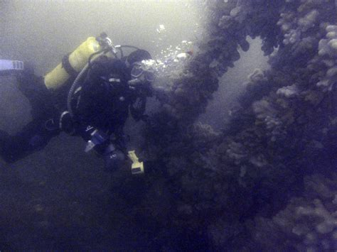 Adrienne Rich Diving Into The Wreck Essay literary analysis of the poem diving into the wreck at