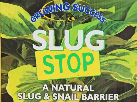 how to get a s nail to stop bleeding get rid of slugs garden snails slug stop