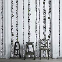 Birch Tree Wall Stickers Birch Tree Wall Decals 9 Ft Tall Quantity Of 5
