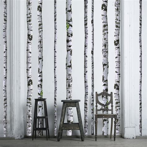 birch tree wall decals 9 ft quantity of 5