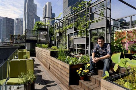 architecture practices urban farming in singapore has moved into a new high tech
