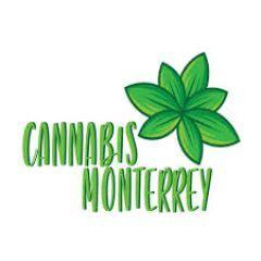 monterreycannabiscom venta de marihuana thc real cbd terapeuticaeuropea  domicilio en
