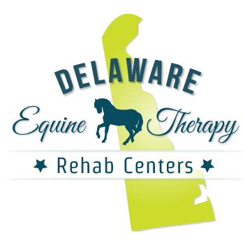Detox Centers In Delaware by Delaware Equine Therapy Rehab Centers