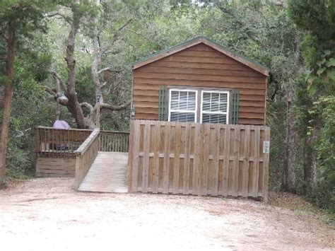 St Augustine Cing Cabins by Tree Canopy And Road In Park Picture Of