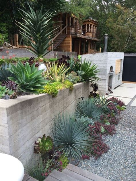 low maintenance landscaping houzz