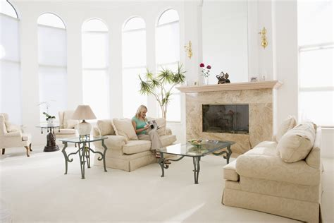 clean living room differences between professional carpet cleaning services