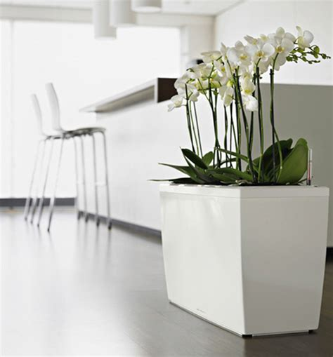 modern planters indoor lechuza sub irrigation planters with modern design digsdigs