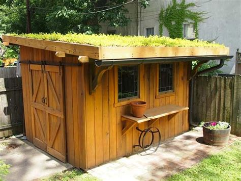 shed design ideas  staying power living roofs