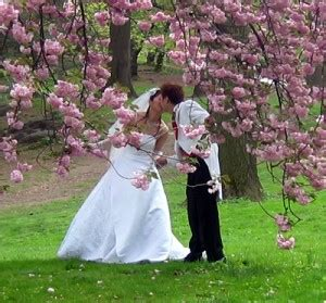 April Wedding Ideas by March And April Wedding Themes And Colours Suggestions