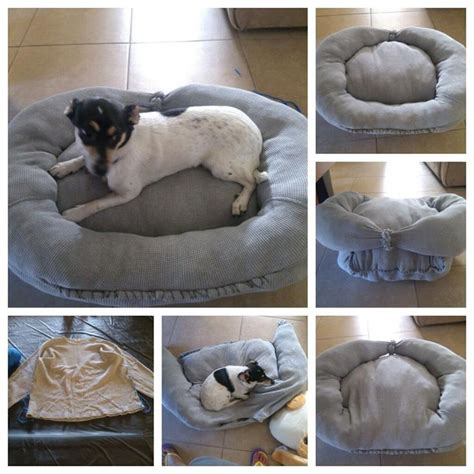 diy dog bed pillow diy dog bed made from old sweat shirt and some stuffings i have an old huge stuff toy