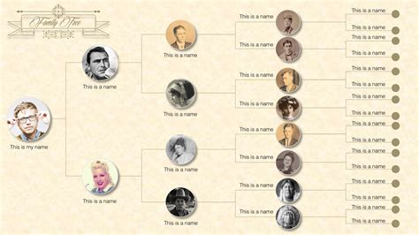 family tree template for powerpoint family tree powerpoint templates slidemodel