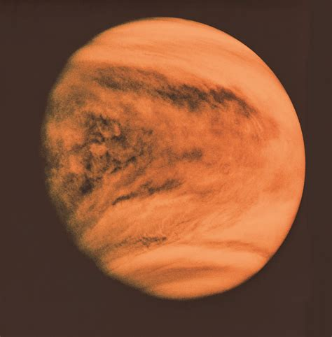 Venus Models