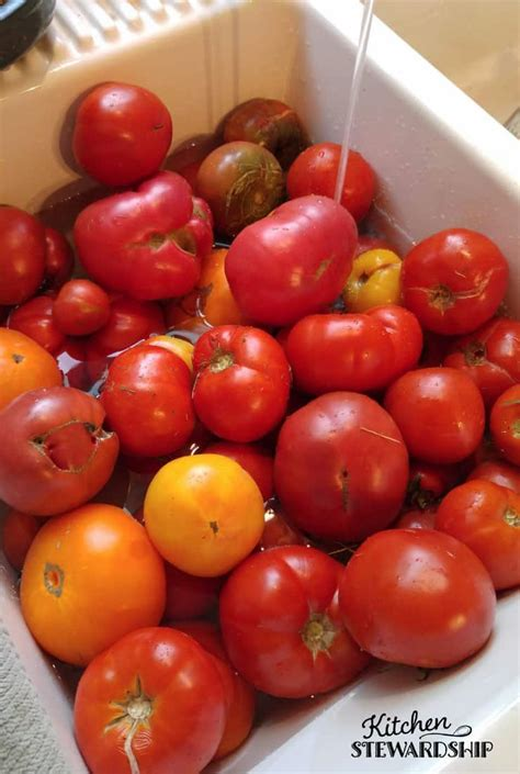 can my eat tomatoes 3 easy ways to preserve tomatoes that don t involve canning