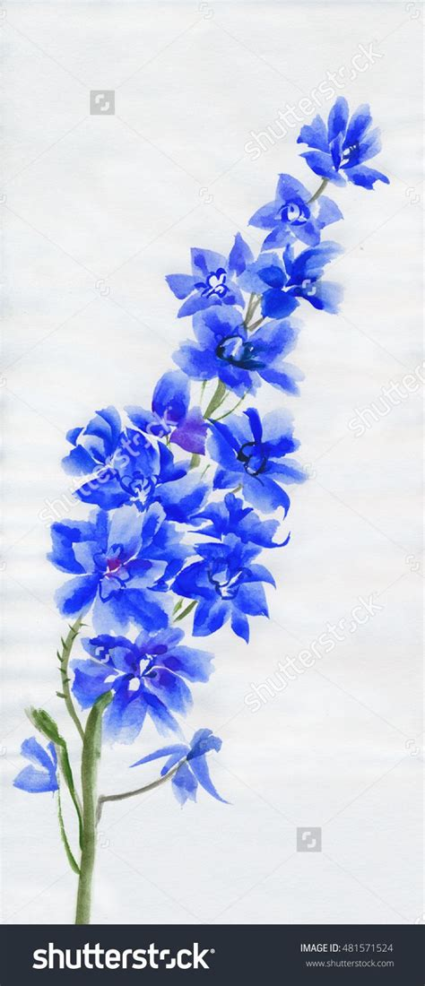 delphinium tattoo best 25 delphinium ideas on delicate