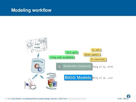 modeling workflow a modeling workflow in systems biology an overview