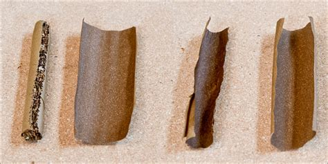 How To Make A Blunt Out Of Paper - how to roll a blunt with a glass filter tip