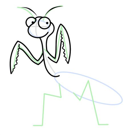 How To Draw A Praying Mantis Easy