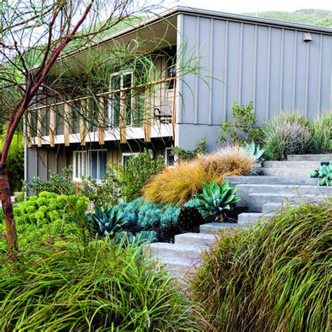 mid century modern landscaping lush landscaping for a mid century modern home sunset