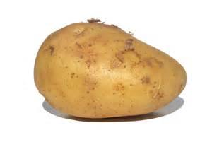 the day and of the potato simcoe organics