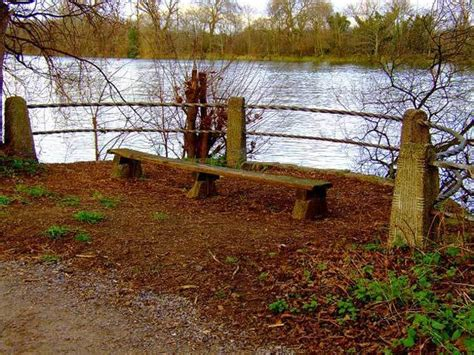the source of the thames the games way 187 mile long nature ist chiswick riverside londonist