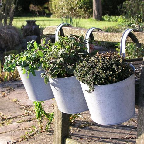 Balcony Planters Uk by Buy Balcony Planters The Worm That Turned Revitalising