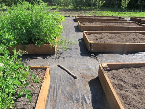 raised bed gardening osu extension service offers advice