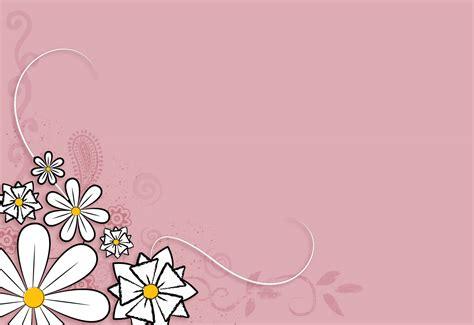 imágenes de flores wallpapers fondo de pantalla flores blancas en fondo rosa fondo pc