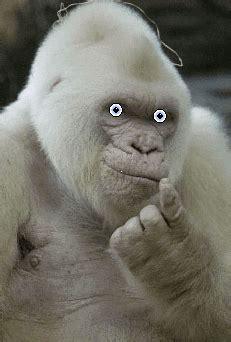 Ape Image File