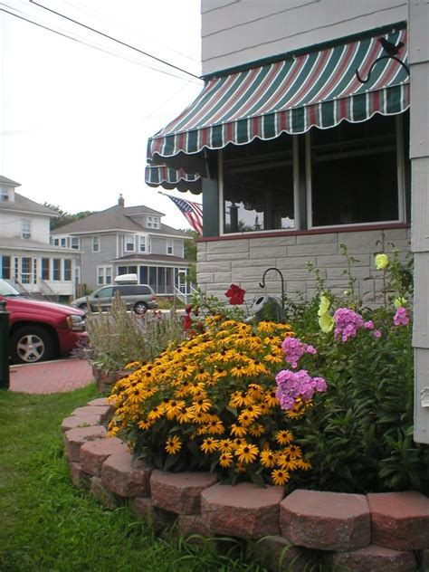 the island guest house nj the island guest house bed breakfast pet policy