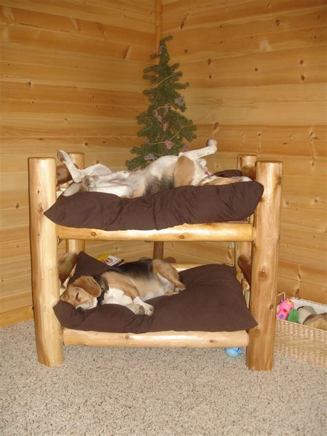 Bunk Bed For Dogs Rustic Log Bunk Bed Now I Just Need A Second Aminals Beds Beds