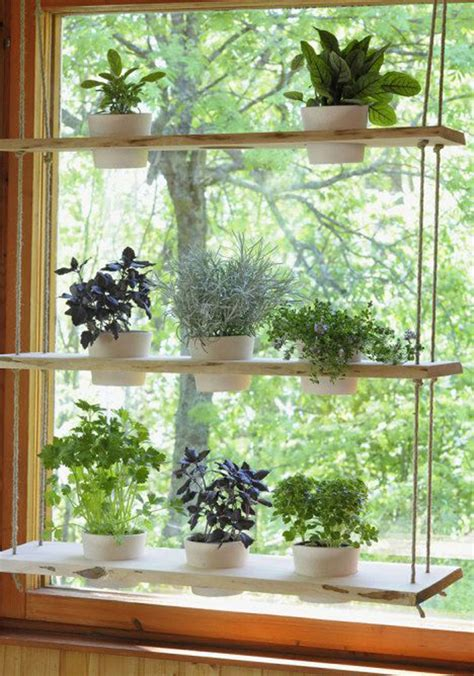 Hanging Herbs In Kitchen Window by 25 Creative Diy Indoor Herb Garden Ideas House Design