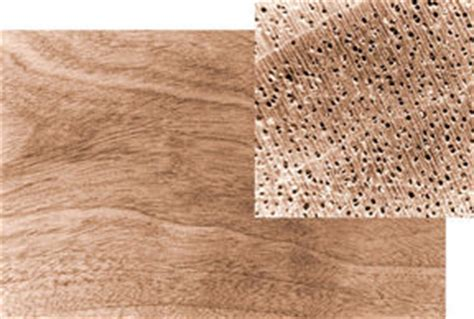grain pattern meaning the nature of wood wood grain