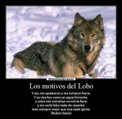 imagenes de lobos llorando los motivos del lobo desmotivaciones
