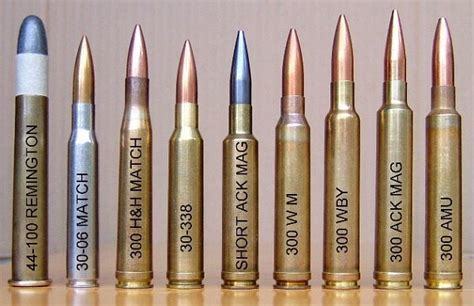 sniper ammunition homeland security revives the purchases