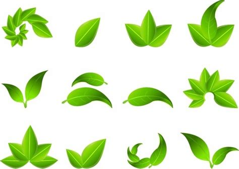 leaf pattern cdr leaf free vector download 3 440 free vector for